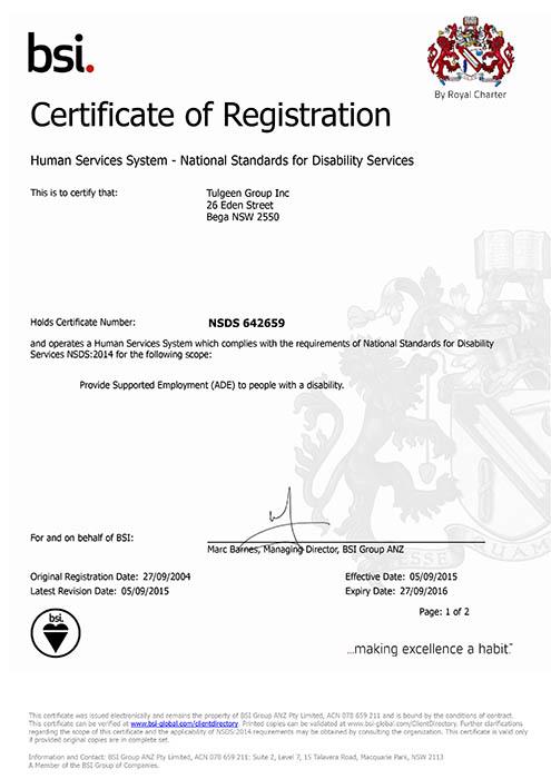 1509-15 BSI Audit Certificate