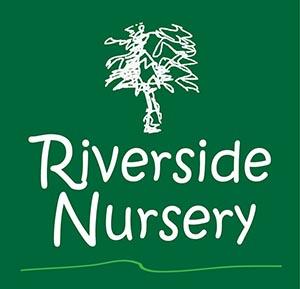 RN logo 1