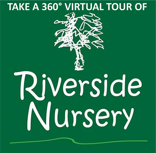 RN VIRTUAL TOUR LOGO